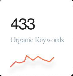 433 organic keywords